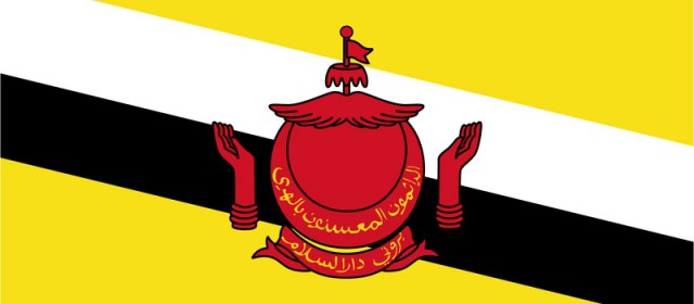 Get an IP address from Brunei Darussalam
