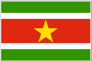 surinamese ip address