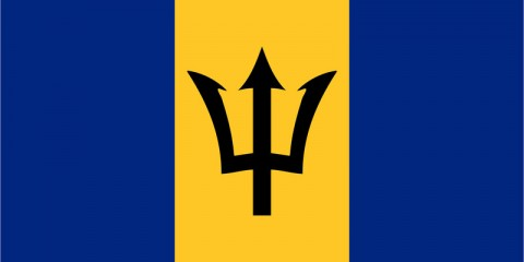 Barbadian IP Address