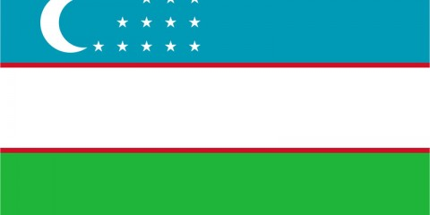 Uzbek IP Address