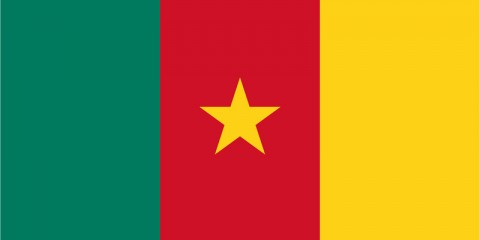 Cameroonian IP Address