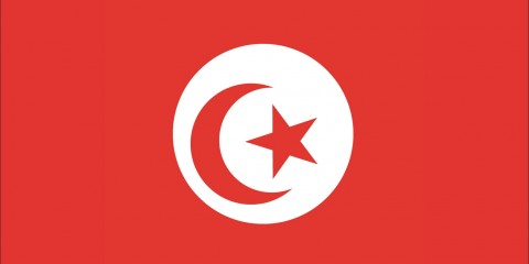 Tunisian IP Address