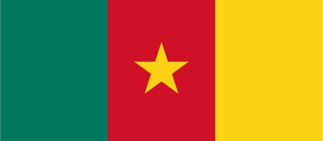 Get a Cameroonian IP address